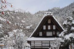 岐阜県税務調査対応支援センター