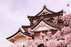 滋賀県税務調査対応支援センター