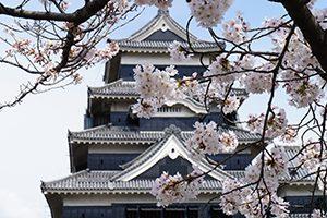 長野県税務調査対応支援センター