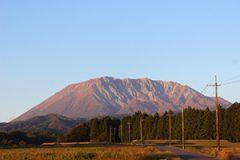 鳥取県税務調査対応支援センター