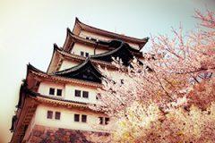 愛知県税務調査対応支援センター
