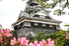 熊本県税務調査対応支援センター